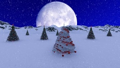 Single White Christmas Tree and big beautiful Moon Stock Footage