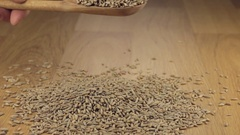 Rye grains get enough sleep from a wooden spoon on a pile of rye Stock Footage