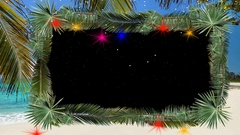 Christmas palms in Florida, Island, Bahama Stock Footage