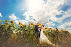 Wedding couple in sunflowers in summer Stock Photos
