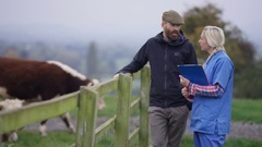 4K Farmer with vet out in the field checking on the livestock Stock Footage