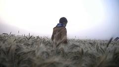Boy walking on wheat field at sunrise, mist in a wheat field Stock Footage