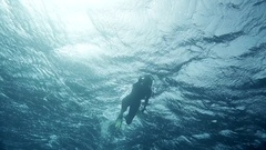 Diver swims at the depth. Red Sea Stock Footage