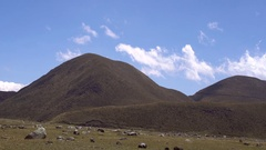 Hummocky ground at the base of Cotopaxi Volcano in the Ecuadorian Andes. Stock Footage