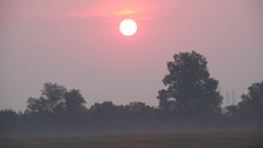 Sun over misty land Stock Footage