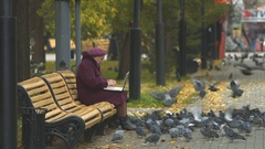 Grandmother with laptop and pigeons. Stock Footage