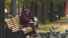 Grandmother with laptop and birds. Slow motion. Stock Footage