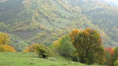 Magical autumn landscape, colored trees, hills and mountain Stock Footage