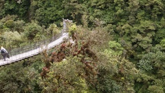 A precarious suspension bridge hanging over a steep rainforest ravine Stock Footage