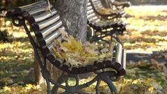 Autumn leaves on empty bench, sunny day in the park Stock Footage