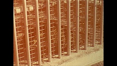 Vintage 16mm film, 1946 Sarasota cruelly caged animals, pacing Stock Footage