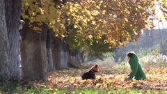 Young mother and lovely son playing with autumn leaves, sunny day, lifestyle Stock Footage