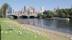 Yarra River and City, Melbourne, Victoria, Australia Stock Footage