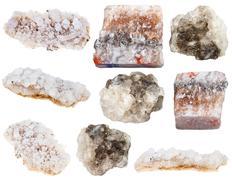Various halite (rock salt) and sea salt minerals Stock Photos