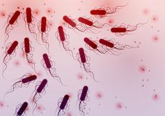 Group of E. coli Bacteria - Vector Illustration Stock Illustration