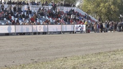 Brown harness horse with a jockey trots to the finish (slow motion) Stock Footage
