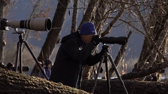 Photographer in the Forest Stock Footage