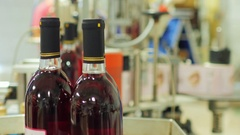 Bottles of alcohol coming from the conveyor belt. Several bottles of red wine in Stock Footage