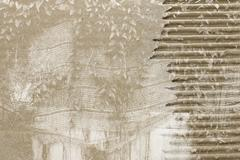 Dust and Scratched Cardboard background. Stock Photos