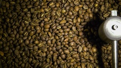 Freshly roasted coffee beans being mixed in cooling tray Stock Footage