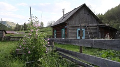 Garden flowers. The house in the mountains. wooden fence. Russian Siberia. Stock Footage