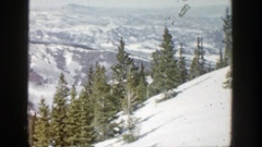 1961: upright fir trees contrast with steep snowy slope and mountain has deep Stock Footage