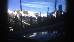 1961: driving past big pine trees and large snow capped mountains. ASPEN Stock Footage