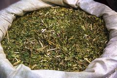 Yerba mate tea Stock Photos
