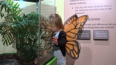2016: little girl at science exhibit with butterfly costume BROOMFIELD COLORADO Stock Footage