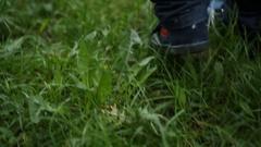Little feet walking in the grass Stock Footage