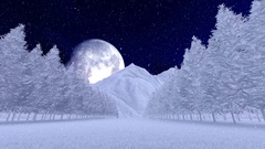 Christmas tree alley covered with snow over big beautiful moon Stock Footage