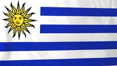 Flag of Uruguay waving in the wind, seemless loop animation Stock Footage