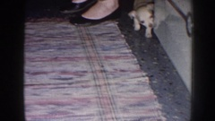 1958: a puppy exploring through the kitchen while people prepare something. Stock Footage