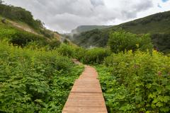 Wood trail in Valley of Geysers Stock Photos