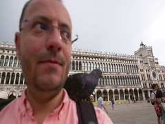 Man feeding pigeons on St. Mark's Square, Venice, Italy. Stock Footage