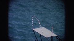 1962: sea lion climbing onto a platform in front of a lake CALIFORNIA Stock Footage