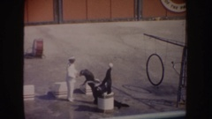 1962: three very well trained seals playing ball and picking up flower rings in Stock Footage