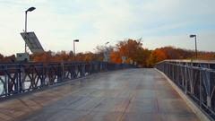 Niagara Falls New York foliage Stock Footage