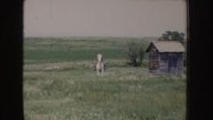 1955: a young boy enjoying a horse ride IDAHO Stock Footage