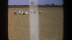 1957: planting season begins OREGON Stock Footage