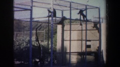 1957: five monkeys in a cage swinging from the top and running around SAN Stock Footage