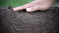 Woman hand prepare soil for planting tree Stock Footage