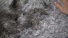Rubbing shag rug carpet Stock Footage