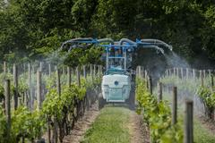 Agricultural chemical treatments in spring vineyard Stock Photos