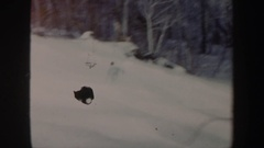 1962: a person with professional-looking skills snowboards down a slope of snow Stock Footage