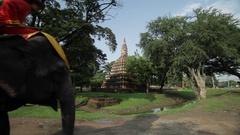 WS Elephants carrying tourists / Ayutthaya, Thailand Stock Footage