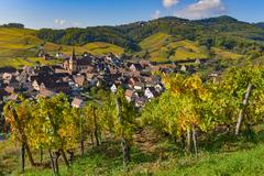 Niedermorschwih, Alsatian vineyards, Alsace, France, Europe, Autumn, Mountain Stock Photos