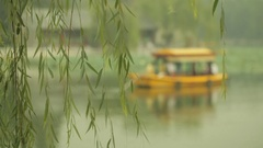 MS SELECTIVE FOCUS Tour boat floating on lake, willow tree in foreground / Stock Footage