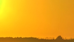 Sunset in the clear sky. The sun goes down over the distant trees on the horizon Stock Footage