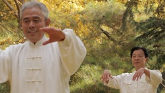 MS PAN SELECTIVE FOCUS Two elderly men doing Tai Chi in park / China Stock Footage